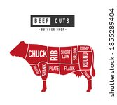 beef meat cuts. diagram and... | Shutterstock .eps vector #1855289404