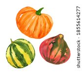 colorful watercolor pumpkins... | Shutterstock . vector #1855614277
