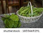 A Closeup Shot Of Green Beans...