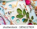 Art Botany Flat Lay With...