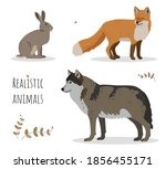 vector set of realistic forest... | Shutterstock .eps vector #1856455171