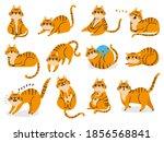 Cat Poses. Cartoon Red Fat...