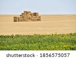 Spanish Landscape View Of...
