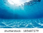 underwater shot of the swimming ... | Shutterstock . vector #185687279