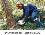 Lumberjack Logger Worker In...