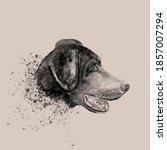 Vintage Aquarelle Painting Dog...