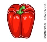 red paprika. sweet peppers...   Shutterstock .eps vector #1857047011