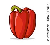 red paprika. sweet peppers...   Shutterstock .eps vector #1857047014