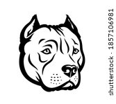 american bully dog isolated...   Shutterstock .eps vector #1857106981
