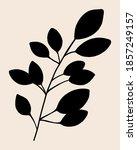botanical abstract art branch...   Shutterstock . vector #1857249157