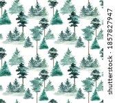 pine forest  fir trees  pines...   Shutterstock . vector #1857827947