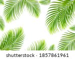 concept texture leaves abstract ... | Shutterstock . vector #1857861961