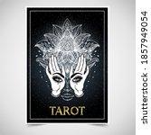 tarot reader  fortuneteller ... | Shutterstock .eps vector #1857949054
