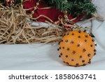 Close Up. Orange Fruit With...
