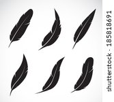 Vector Group Of Black Feather...