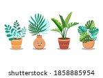 indoor landscape garden potted... | Shutterstock .eps vector #1858885954