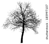 tree vector illustration. | Shutterstock .eps vector #185997107