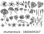 vector set of hand drawn black...   Shutterstock .eps vector #1860604267
