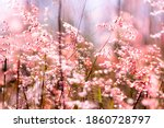 gorgious pink floral  fantasy... | Shutterstock . vector #1860728797