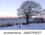 Blue Hour Rural Winter...