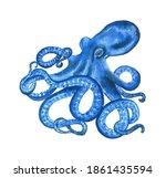 Watercolor Octopus In Blue...