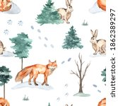 Forest Animals In The Winter...