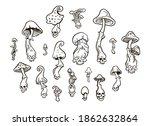 magic mushrooms. black and... | Shutterstock .eps vector #1862632864