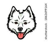 american eskimo dog   isolated... | Shutterstock .eps vector #1862699164