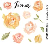 collection of hand painted... | Shutterstock .eps vector #186323579