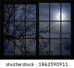 Full Moon View Through The...