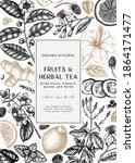 hand sketched herbal tea... | Shutterstock .eps vector #1864171477