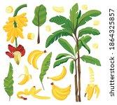 cartoon vector set of bananas... | Shutterstock .eps vector #1864325857