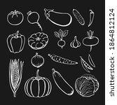 hand drawn vegetables...   Shutterstock .eps vector #1864812124