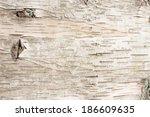 Birch Bark Natural Texture...