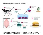 How Cultured Lab Grown Meat Is...