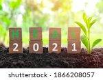 Year 2021 Healing  Hope  Growth ...