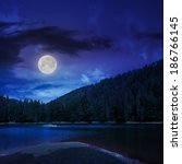 view on lake near the pine forest  on mountain background at night in moon light - stock photo