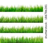 grass isolated on white. and... | Shutterstock .eps vector #186786281