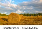Panorama Of Golden Hay Bales On ...