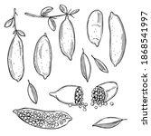 hand drawn australia finger...   Shutterstock .eps vector #1868541997