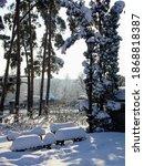 Snowy Park. A Lot Of Snow. Snow ...