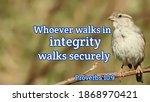 Whoever Walks In Integrity...