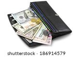 Various Currencies In Purse...