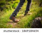 Hiker Trekking Or Walking On A...