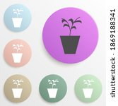 plant in the pot badge color...