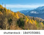 rocky mountains and autumnal... | Shutterstock . vector #1869350881