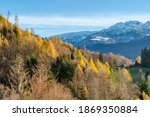 rocky mountains and autumnal... | Shutterstock . vector #1869350884