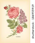 vintage card with floral drawn... | Shutterstock .eps vector #186955919