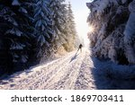 A Man Cross Country Skiing...