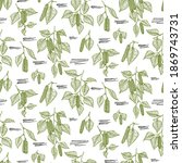seamless pattern with birch...   Shutterstock .eps vector #1869743731